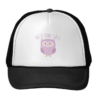 Wise Owl Says Hats