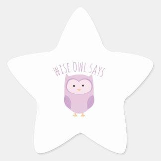Wise Owl Says Star Sticker