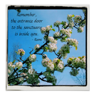 Wise Quotes Spring Floral Poster