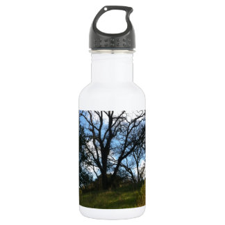 wise tree stainless steel water bottle