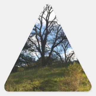 wise tree triangle sticker