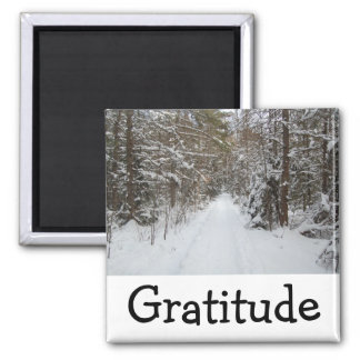 Wise Words Magnet:  Gratitude 2 Inch Square Magnet