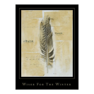 wiser for the winter poster