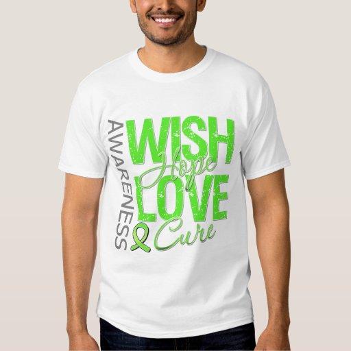 Wish Hope Love Cure Lyme Disease Tee Shirt