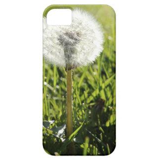 Wish iPhone SE/5/5s Case