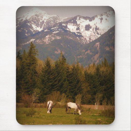 Wish on a White Horse Mousepads