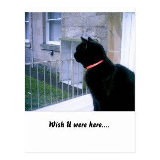 Wish U were here... Postcard