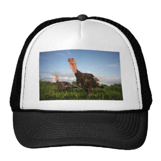 Wish we could fly trucker hat