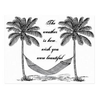 Wish you were beautiful vintage palm tree postcard