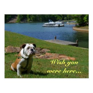 """""""Wish You Were Here"""" English Bulldog at the Lake Post Card"""