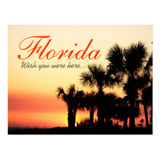 Wish you were here - Florida palm tree sunset Postcards