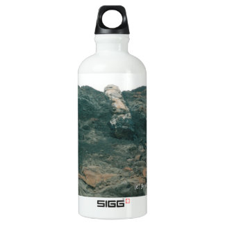 Wishbone Hill 2002 Aluminum Water Bottle