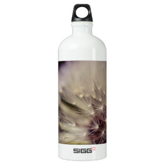 Wishes Aluminum Water Bottle