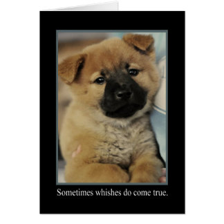 Wishes Animal Notecards Card