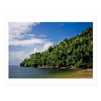 wishes ashore postcard