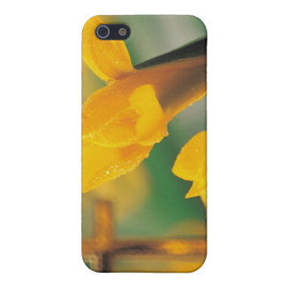 Wishes for a Blessed & Wonderful Easter! iPhone SE/5/5s Case