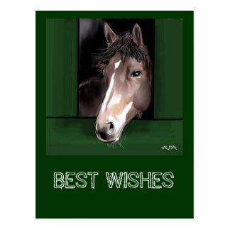 Wishes Pferd.gemalt best Tarjetas Postales