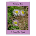 Wishing You A Beautiful Day! - Blank Inside Stationery Note Card