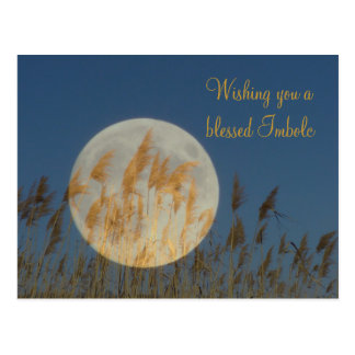 Wishing you a blessed Imbolc Postcard