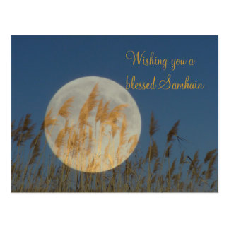 Wishing you a blessed Samhain Postcard