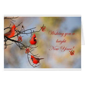 Wishing you a bright New Year! Card