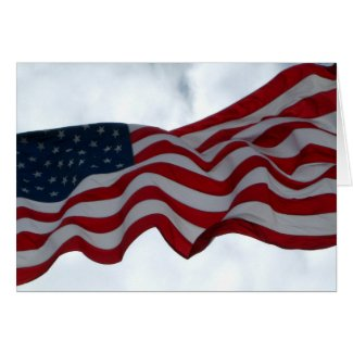 Wishing you a Happy Veterans Day Greeting Card