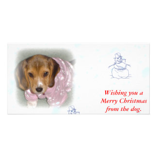 Wishing you a Merry Christmas from the dog. Custom Photo Card