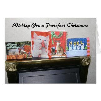 Wishing You a Purrrfect Christmas Card