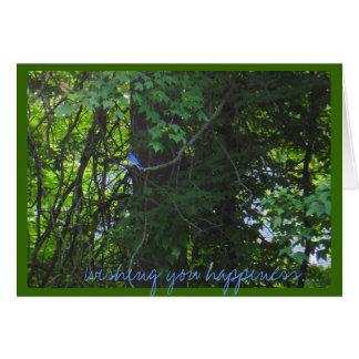 'Wishing You Happiness...' Bluebird photo notecard Greeting Cards