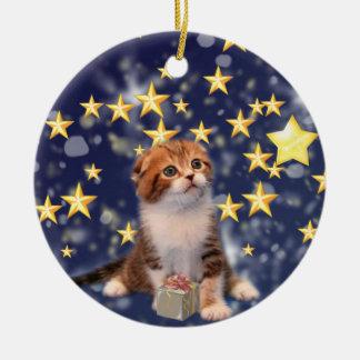 Wishing You Wonder and Joy Cat Artwork Ceramic Ornament