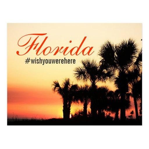 #wishyouwerehere hashtag - Florida palm sunset Postcard