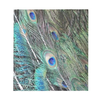 Wispy Peafowl Flumes Notepad