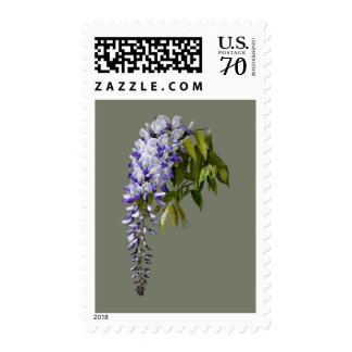 Wisteria and Leaves Postage