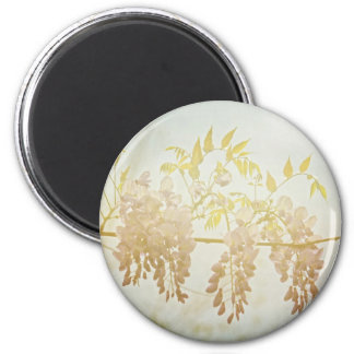 Wisteria Blooms magnet