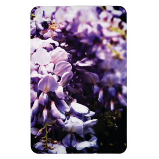 Wisteria Flower Magnet
