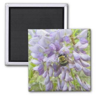 Wisteria & Male Carpenter Bee Magnet