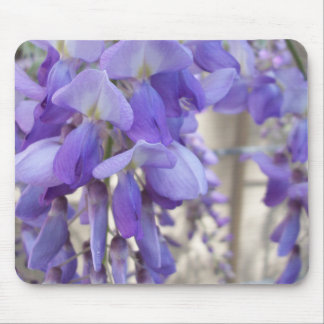 Wisteria Mouse Pads