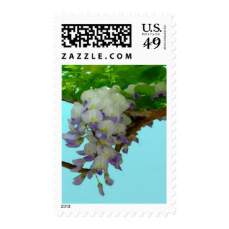 Wisteria on the Vine Stamps