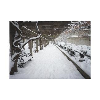 Wisteria Pergola in Winter - Central Park Canvas Print