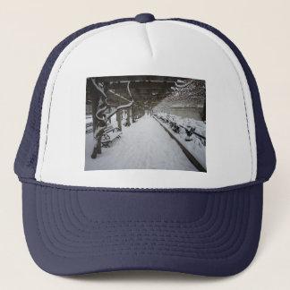Wisteria Pergola in Winter, Central Park, NYC Trucker Hat