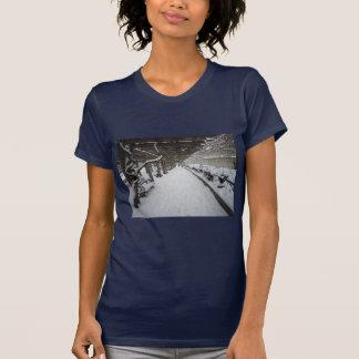 Wisteria Pergola in Winter, Central Park, NYC T Shirt