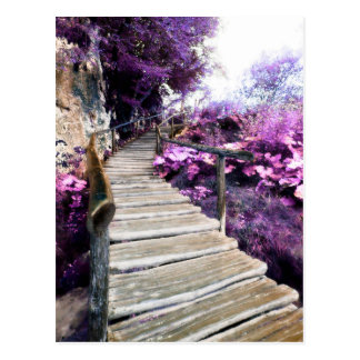 wisteria stairs postcard
