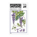 Wisteria Stamps