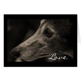 Wistful Greyhound Love Greeting Card