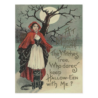 Witch Black Cat Full Moon Postcard