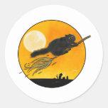 Witch Black cat on broom