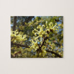 Witch Hazel Flowers Jigsaw Puzzle