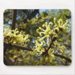 Witch Hazel Flowers Mouse Pad