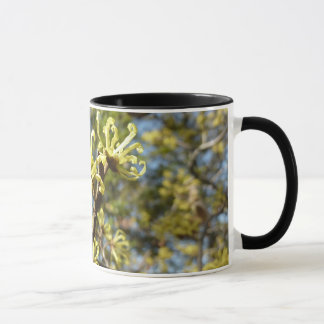 Witch Hazel Flowers Mug