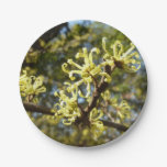 Witch Hazel Flowers Paper Plate